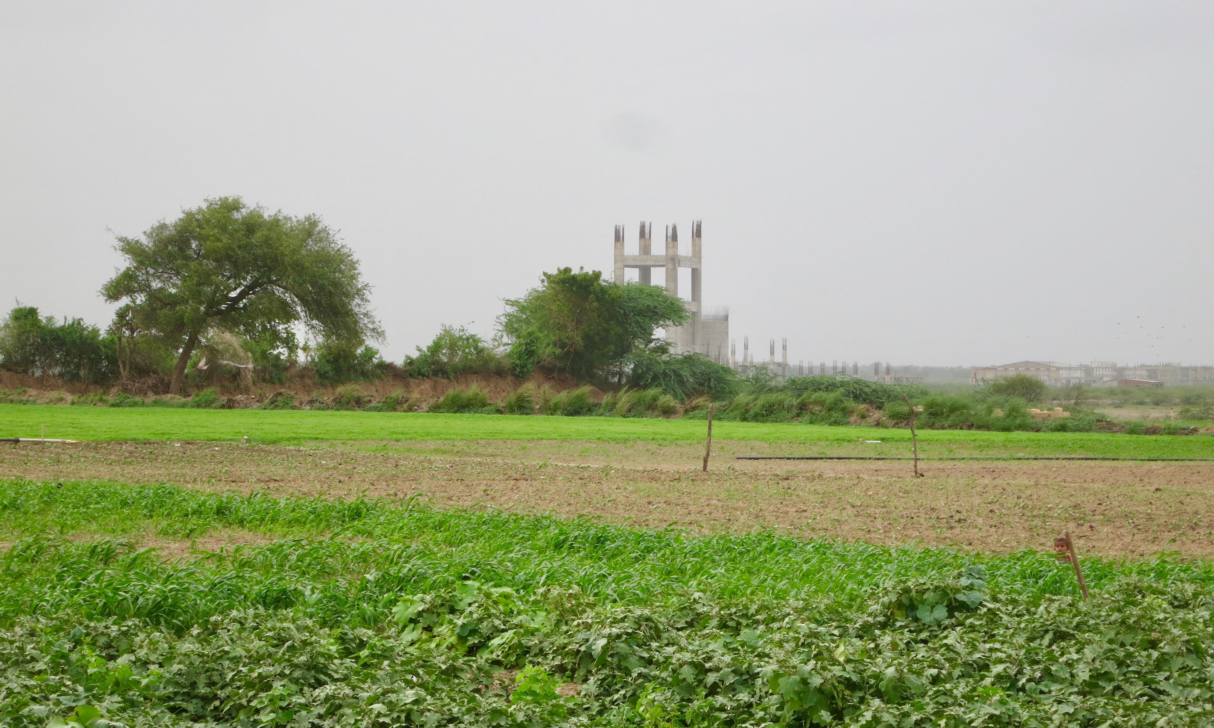 nirma ltd. cement plant in coastal villages of mahuva, gujarat